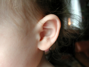 Image of a child's ear
